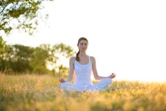 Young Beautiful Woman Practices Yoga on the Sunny Meadow Stock Images