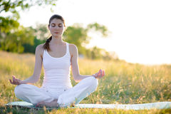 Young Beautiful Woman Practices Yoga on the Sunny Meadow Stock Image