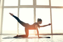 Young beautiful woman practicing yoga and gymnastic. Wellness concept. Classes in single sports. Stock Photo