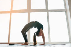 Young beautiful woman practicing yoga and gymnastic. Wellness concept. Classes in single sports. Royalty Free Stock Photos