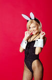 Young beautiful woman in rabbit costume Royalty Free Stock Image