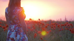 Young beautiful woman with raised arms in spring field stock footage