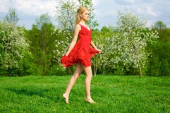 Young beautiful woman in a red dress Stock Image