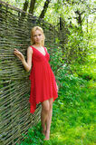Young beautiful woman in a red dress Stock Photography