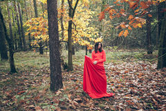 Young beautiful woman in red dress with crown of autumn yellow l Stock Photo
