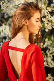 Young beautiful woman in red dress Stock Photos
