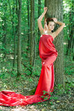 Young beautiful woman in red dress in green woods Stock Photography