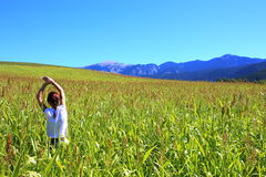 Young beautiful woman relaxing in the middle of a green cereals field during the last days of summer in the Pyrenees mountains Royalty Free Stock Photo