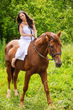 Young beautiful woman rides a horse Stock Images