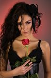 Young beautiful woman with rose in her Stock Images
