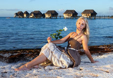 young beautiful woman with a rose sits on sand at the sea edge Royalty Free Stock Photos