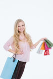 Young beautiful woman with shopping bags and gifts Stock Images