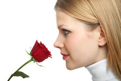 Young beautiful woman with a single red rose Stock Image
