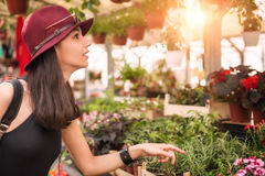 Young beautiful woman smelling flowers Stock Image