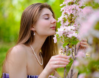 Young Beautiful Woman Smelling a Pink Sakura Flowers Royalty Free Stock Image