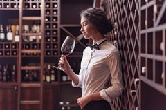 Young beautiful woman sommelier tasting red wine. In wine cellar Stock Images