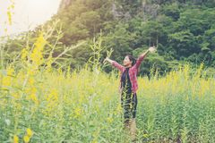 Young beautiful woman standing in the flower field enjoyment. Young beautiful woman standing in the flower field enjoyment background Royalty Free Stock Photos