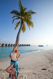 Young beautiful woman stands near palm tree Stock Image