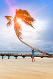 Young beautiful woman stands near palm tree, Maldives Royalty Free Stock Photography
