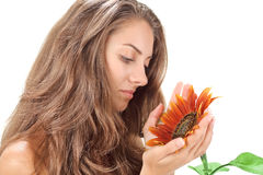 Young beautiful woman with sunflower near face Stock Images