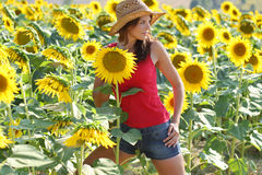 Young beautiful woman between sunflowers Stock Images