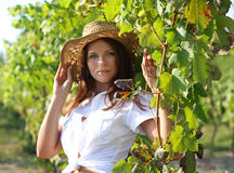 Young beautiful woman between sunflowers Stock Photos