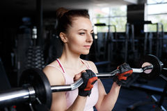 Young beautiful woman training biceps with barbell Royalty Free Stock Image