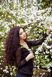 Young beautiful woman under blossom tree Stock Images