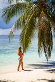 Young beautiful woman under the palm tree, tropical vacation Stock Image