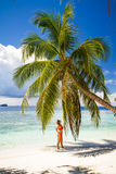 Young beautiful woman under the palm tree, tropical vacation Royalty Free Stock Images