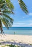 Young beautiful woman walking on tropical beach Stock Photos