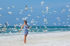 Young beautiful woman watching the seagulls flying. Flock of birds, Siesta Key beach, Florida Royalty Free Stock Images