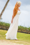Young beautiful woman in wedding dress on natural backgro Stock Photography