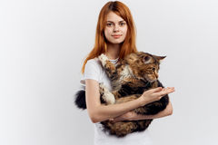 Young beautiful woman on white isolated background holds a cat Royalty Free Stock Photo