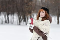 Young beautiful woman in winter park Stock Image