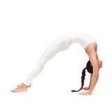 Young beautiful woman yoga posing.  Stock Photo