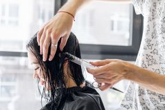 Young beautiful woman having her hair cut at the hairdresser`s. Young male hairdresser smiling and making hairstyle to. Young beautiful women having her hair cut Stock Photography