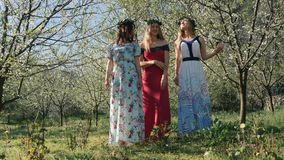 Young beautiful women in long dresses between spring blossom trees. Young beautiful caucasian women in long dresses in bay leaf wreath standing dreamily in stock video footage