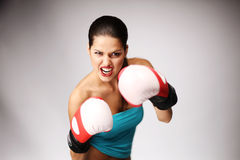 Young beautiful women wiht boxing gloves. Royalty Free Stock Photo