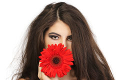Young beautiful young woman with gerbera Royalty Free Stock Images