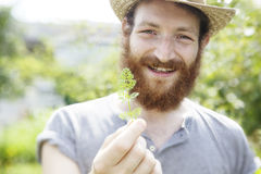 Young beauty bearded farmer man holding a little green cute leaf Royalty Free Stock Image