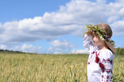 Young beauty looking far away on a wheatfield Stock Image