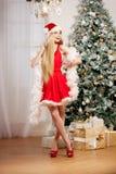 Young beauty santa woman near the Christmas tree. Fashionable lu Royalty Free Stock Photo