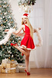Young beauty santa woman near the Christmas tree. Fashionable lu Stock Images