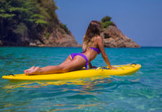 Young beautyful girl on the surf board Royalty Free Stock Images