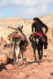 Young Bedouin riding donkey Stock Photos