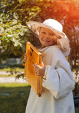 Young beekeeper boy holding frame of honeycomb Stock Photography