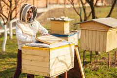 A young beekeeper girl is working with bees and inspecting bee hive after winter royalty free stock image