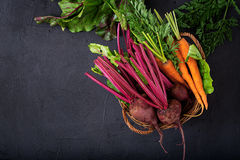 Young beetroot and carrots with a tops in a basket Royalty Free Stock Images