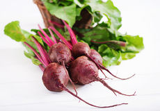 Young beetroot. With a tops on a white background stock images